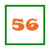 56-os méret (újszülött)